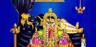 Sri Narayana Hrudaya Stotram