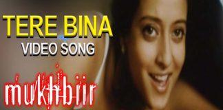 Tere Bina Hindi Video Song