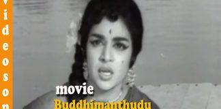 Buddhimanthudu Movie Havvare Havva Video songs