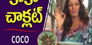 How to Make Coco Chocolate Recipe Udaya Bhanu