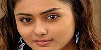 Aei Movie - Aai Mailapur Mayil video song