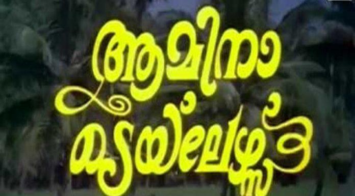 Amina Tailors Malayalam Movie Video Song Medapulari Paravakale jpg