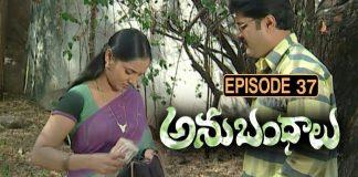 Anubhandhalu Telugu TV Serial Episode #37