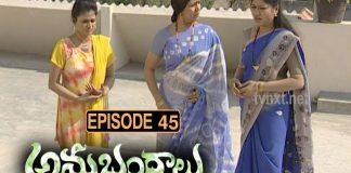 Anubhandhalu Telugu TV Serial Episode #45
