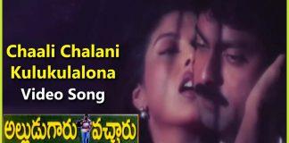 Chaali Chaalani Kulukulalona Heera's Romantic Song in Alludugaru Vacharu