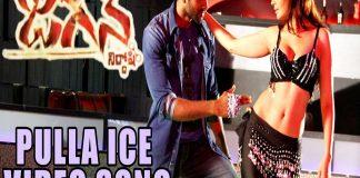 Item Song Of Tollywood Movie Jagan Nirdhoshi Pulla ice Video Song