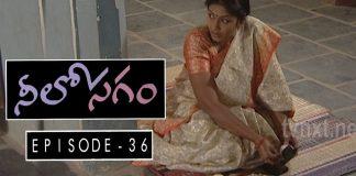Neelosagam Telugu TV Serial Episode 36 Sai Mitra, Hemanth, Narmada, Avinash