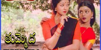 Srinivasa Kalyanam Telugu Movie Songs - Tummeda Tummeda Song