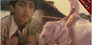Jamboo Savari Kannada Full Length Movie