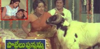 Pottelu Punnamma Full Length Telugu Movie