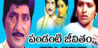 Watch Pandanti Jeevitham Telugu Full Length Moviein HD