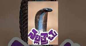 Nallatrachu Telugu Full Length Movie