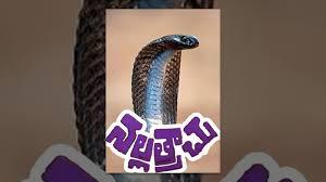 Nallatrachu Telugu Full Length Movie