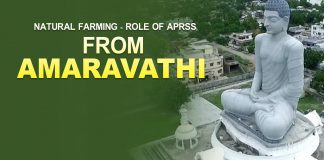 amaravathi, natural farming