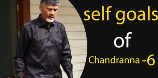 self goals of chandranna, chandra babu, self goals, tdp, cbn